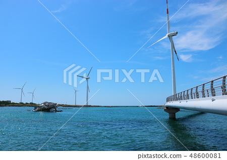 해양풍력발전기,바다,청정에너지,등대 48600081