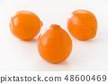 Mineola Orange 48600469