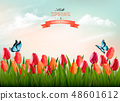 Spring nature background with colorful flowers  48601612