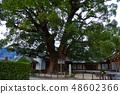 Ozuno of Dazaifu Tenmangu Shrine 48602366