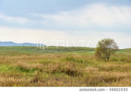 풍경사진 48602830