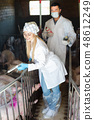 Smiling veterinarians in white coats in pigsty 48612249