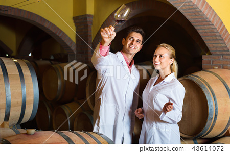 Specialists checking ageing process of wine 48614072