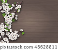 Spring blooming cherry branch on old wooden background. 48628811
