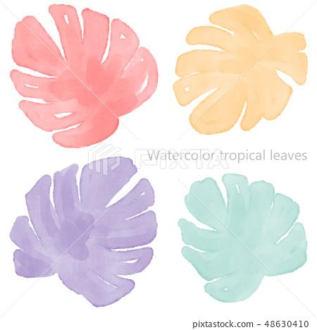 手繪水彩熱帶樹葉 48630410
