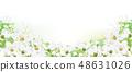 Vector floral  border.   48631026