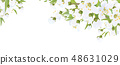 Vector floral  border. White flowers and leaves. 48631029