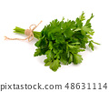 Bunch of Parsley. 48631114