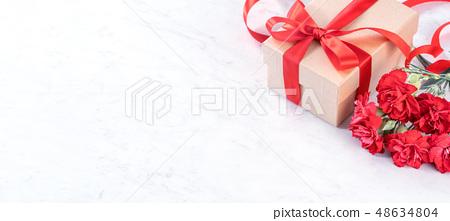 母親節康乃馨花香康乃馨模型母親節康乃馨模板 48634804
