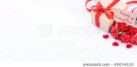 母親節康乃馨花香康乃馨模型母親節康乃馨模板 48634810