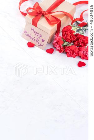 母親節康乃馨花香康乃馨模型母親節康乃馨模板 48634816