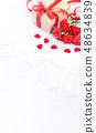 母親節 康乃馨 送禮 カーネーション モックアップ 母の日 carnation template 48634839
