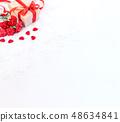 母親節 康乃馨 送禮 カーネーション モックアップ 母の日 carnation template 48634841