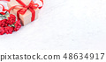 母親節 康乃馨 送禮 カーネーション モックアップ 母の日 carnation template 48634917