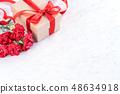 母親節 康乃馨 送禮 カーネーション モックアップ 母の日 carnation template 48634918