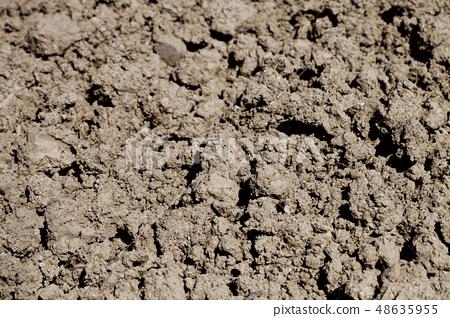 Soil prepared for cultivation. 48635955