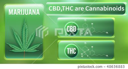 Marijuana, CBD and THC are Cannabinoids. 48636883