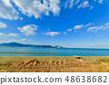 Wild bird playing in Sone Tidal Flats 【Fukuoka Prefecture】 48638682