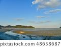 Wild bird playing in Sone Tidal Flats 【Fukuoka Prefecture】 48638687