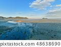 Wild bird playing in Sone Tidal Flats 【Fukuoka Prefecture】 48638690