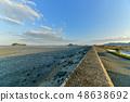 Wild bird playing in Sone Tidal Flats 【Fukuoka Prefecture】 48638692