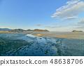 Wild bird playing in Sone Tidal Flats 【Fukuoka Prefecture】 48638706