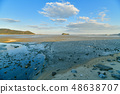 Wild bird playing in Sone Tidal Flats 【Fukuoka Prefecture】 48638707