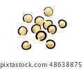 콩 콩 일러스트 48638875