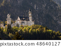 Neuschwanstein Castle - Schwangau Bavaria Germany 48640127