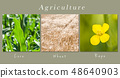 set of fields and meadow- collage with text 48640903