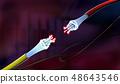 纤维 光学的 电缆 48643546