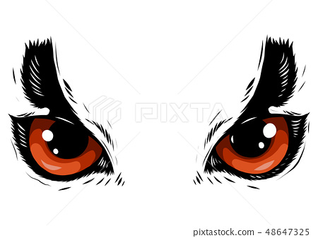 drawing of the eyes owl on white background 48647325