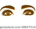 眼睛 女人 女性 48647514