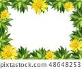 Yellow daisy flower border 48648253