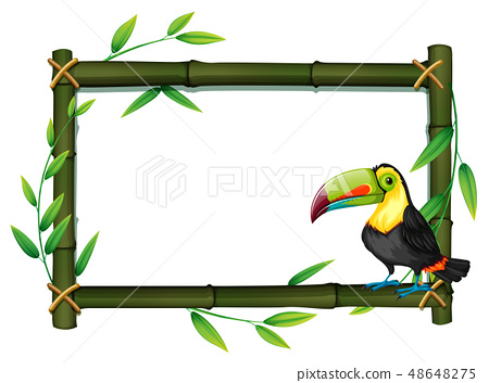 Toucan on bamboo border 48648275