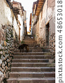 Stone stairs of Cuzco historical city. 48653018