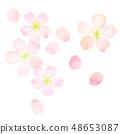 樱花水彩风格纹理 48653087