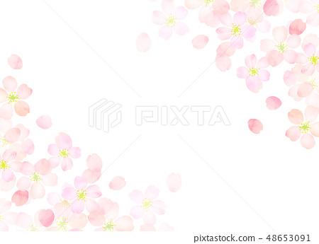 벚꽃 수채화 풍의 질감 48653091