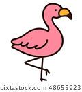 火烈鳥 48655923