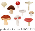 Flat vector set of mushrooms. Forest plant. Edible and poisonous fungi. Natural product. Elements 48656313