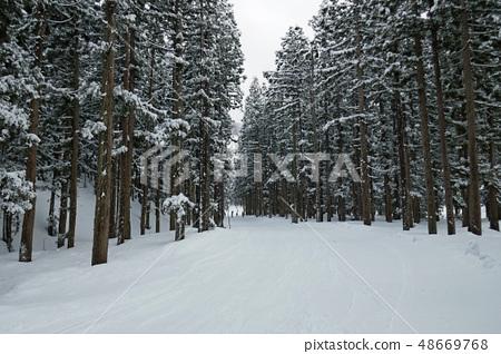 Kami Takahara滑雪勝地森林套餐(Vega) 48669768