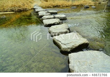 시골 개울가의 한국 전통방식의 돌로 이은 정겨운 징검다리 풍경 48672766