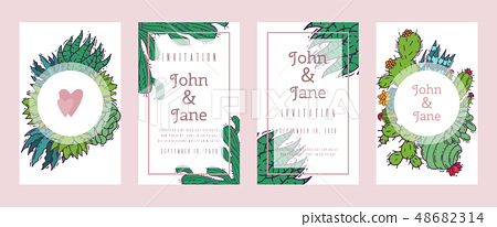 Succulents invitation cacti green plants vector illustration. Nature botanical houseplant floral 48682314