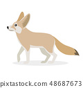 African animal, cute fennec icon isolated on white background, small funny fox, vector 48687673