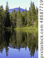 mountain and forrest reflection in clear lake 48687719