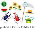 夏季昆蟲收藏 48689137