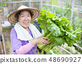 female Senior farmer with vegetables 48690927