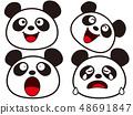 팬더의 다양한 표정 그 1 48691847