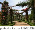 玫瑰花的小直徑覆蓋拱 48696394