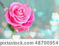 Pink and purple roses with hearts background.  48700954
